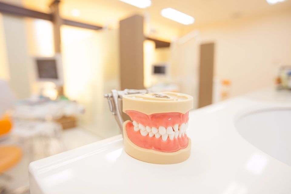 入れ歯について